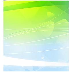 IDI Eikon symbol